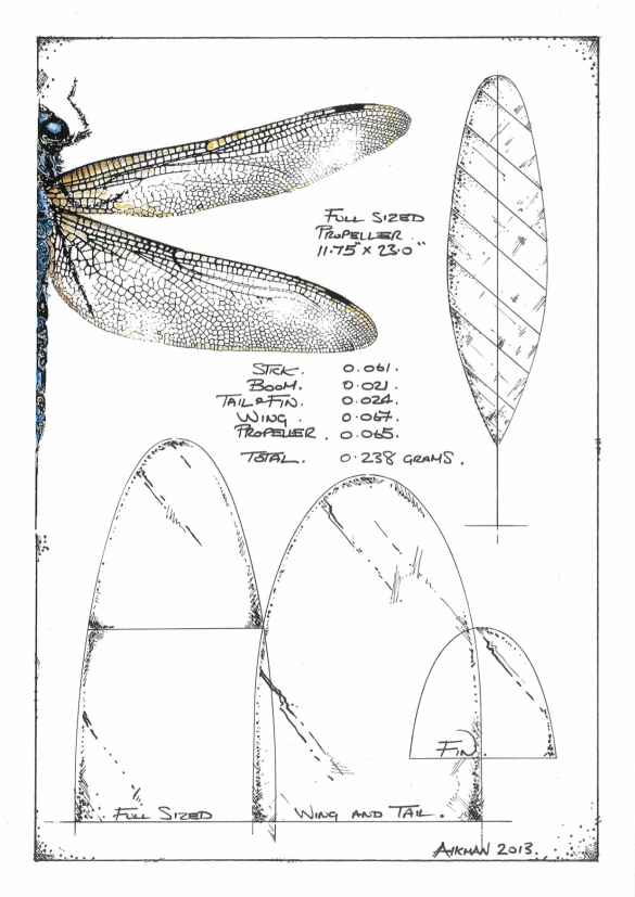 Donnas Dragonfly Plan 2013 copy