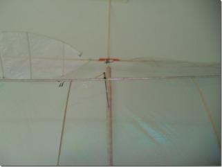 DSC01901[2]
